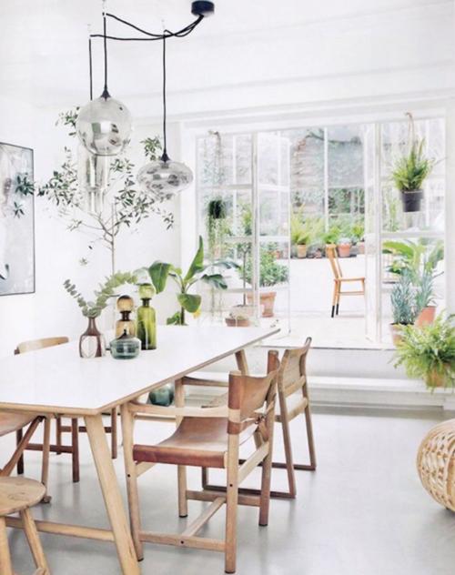 Leefruimte met planten