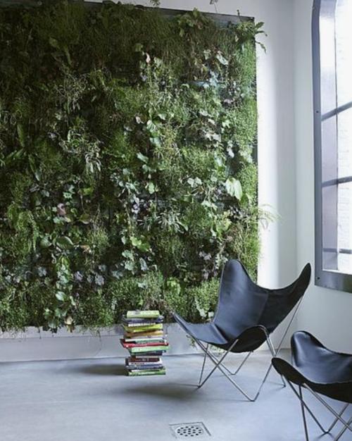 groene plantenmuur